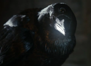 geeky bugle 3 eyed raven